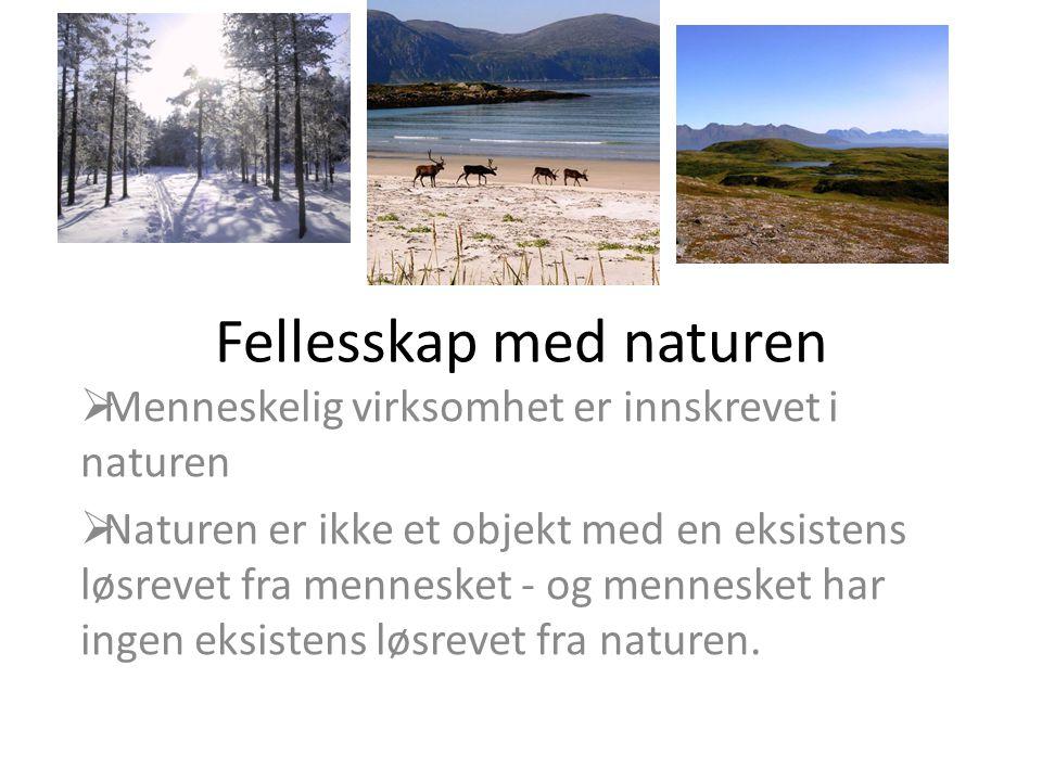 Fellesskap med naturen