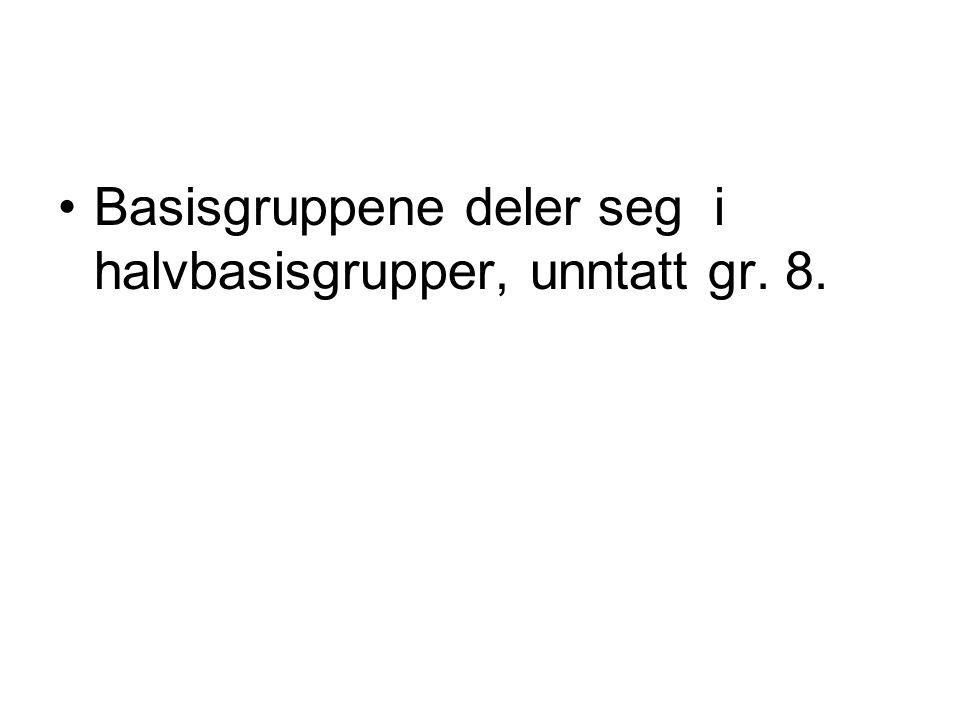 Basisgruppene deler seg i halvbasisgrupper, unntatt gr. 8.
