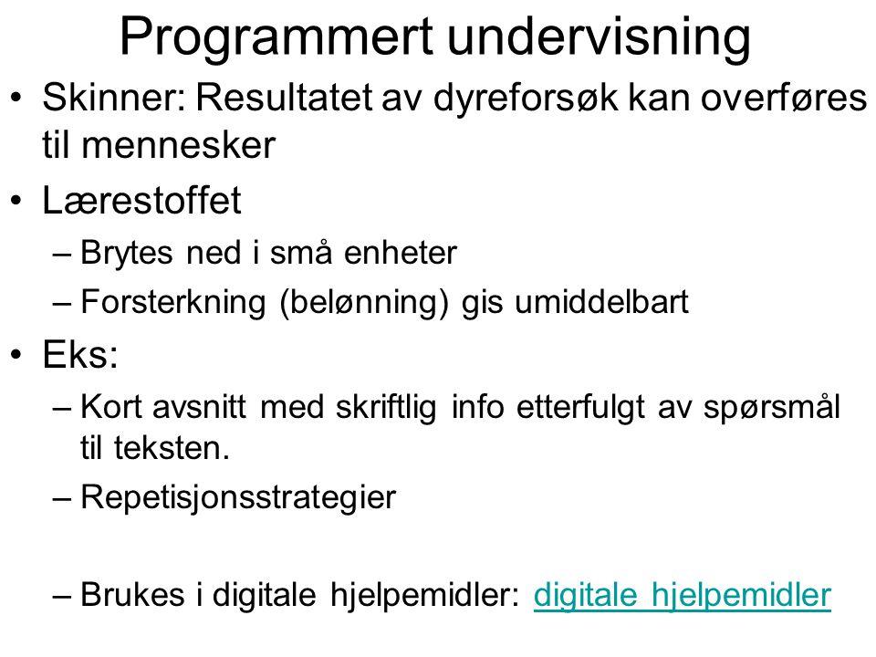 Programmert undervisning