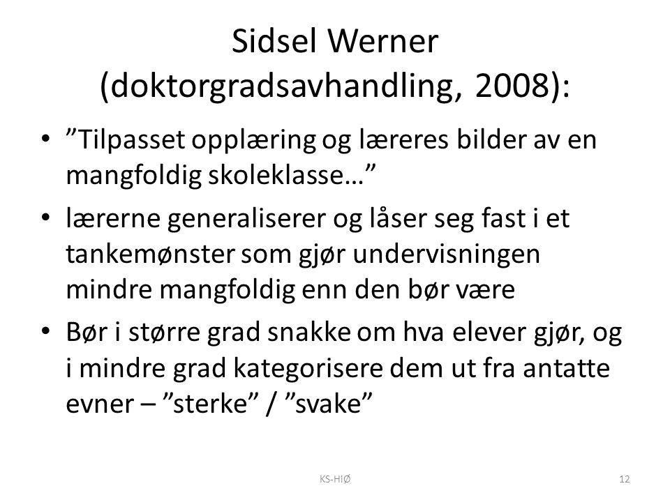 Sidsel Werner (doktorgradsavhandling, 2008):