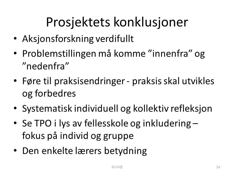 Prosjektets konklusjoner