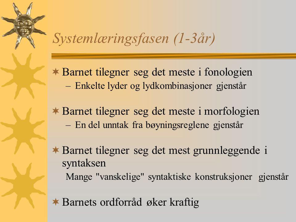 Systemlæringsfasen (1-3år)