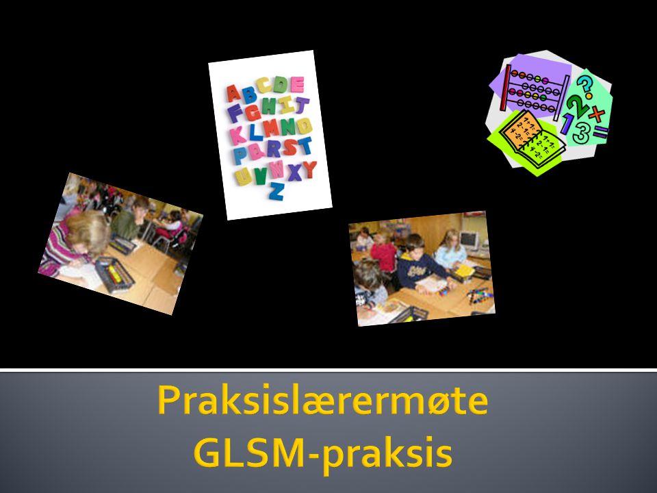 Praksislærermøte GLSM-praksis