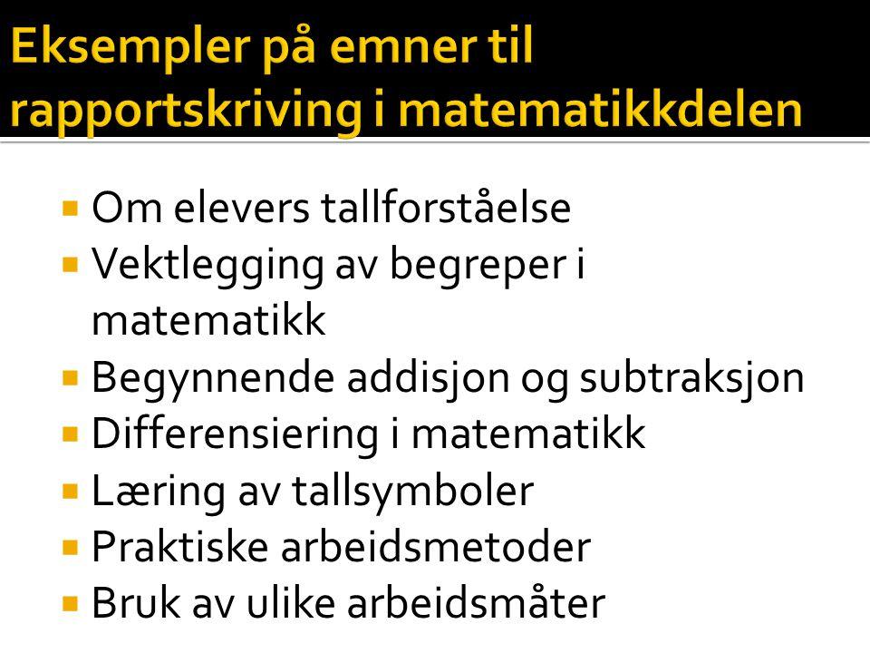Eksempler på emner til rapportskriving i matematikkdelen