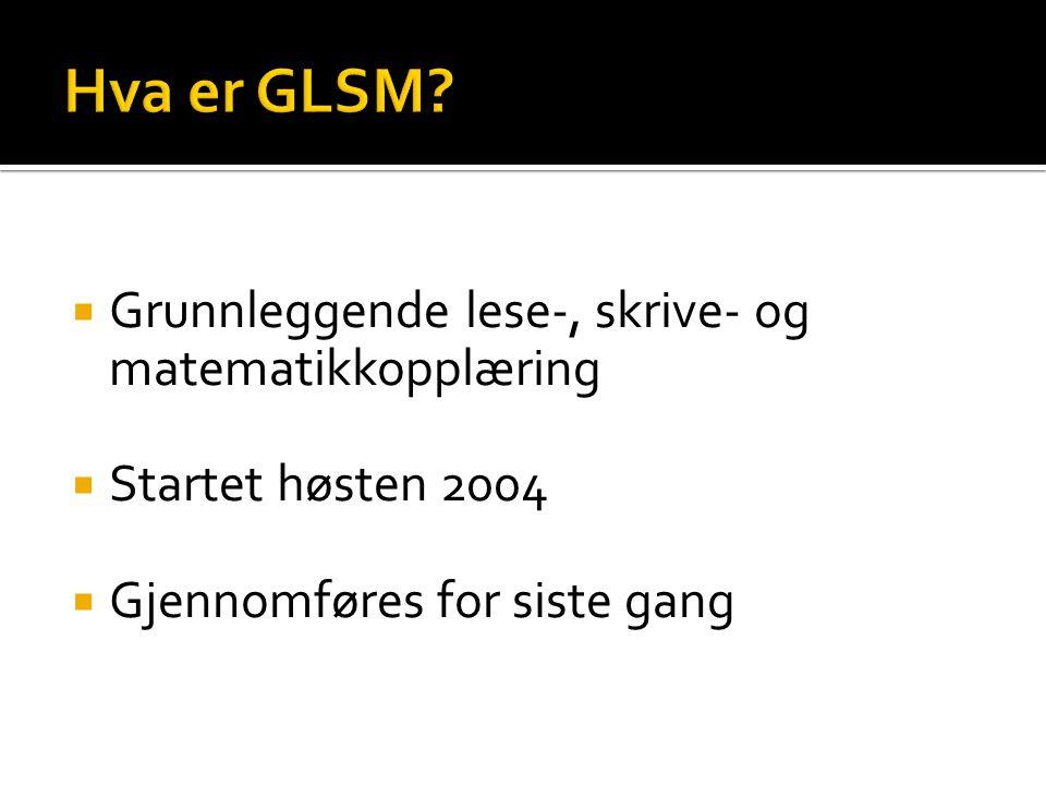 Hva er GLSM Grunnleggende lese-, skrive- og matematikkopplæring