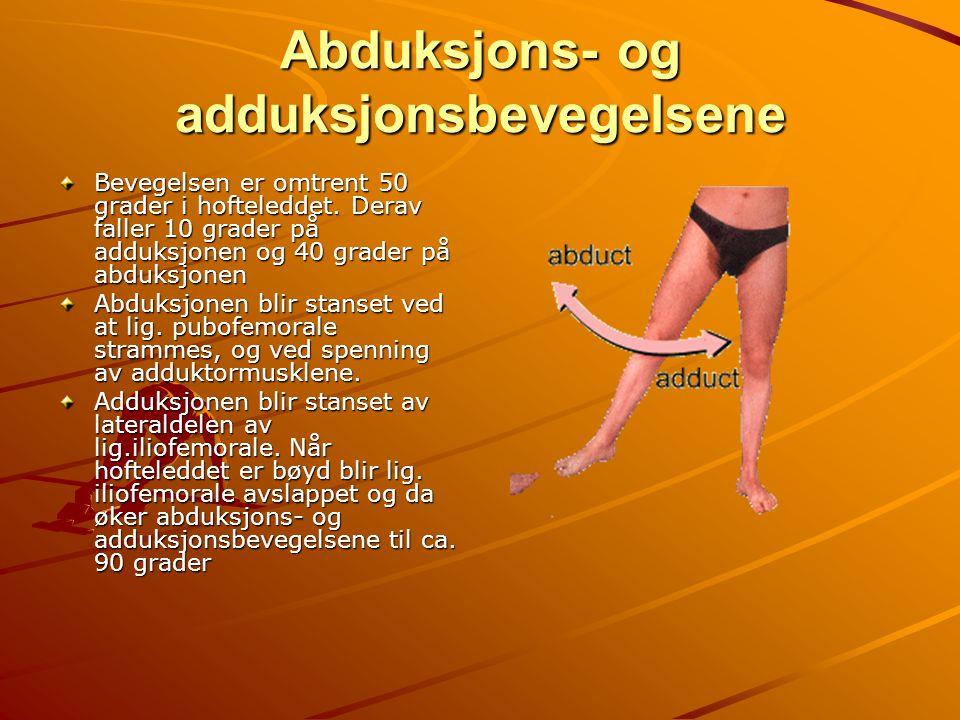 Abduksjons- og adduksjonsbevegelsene