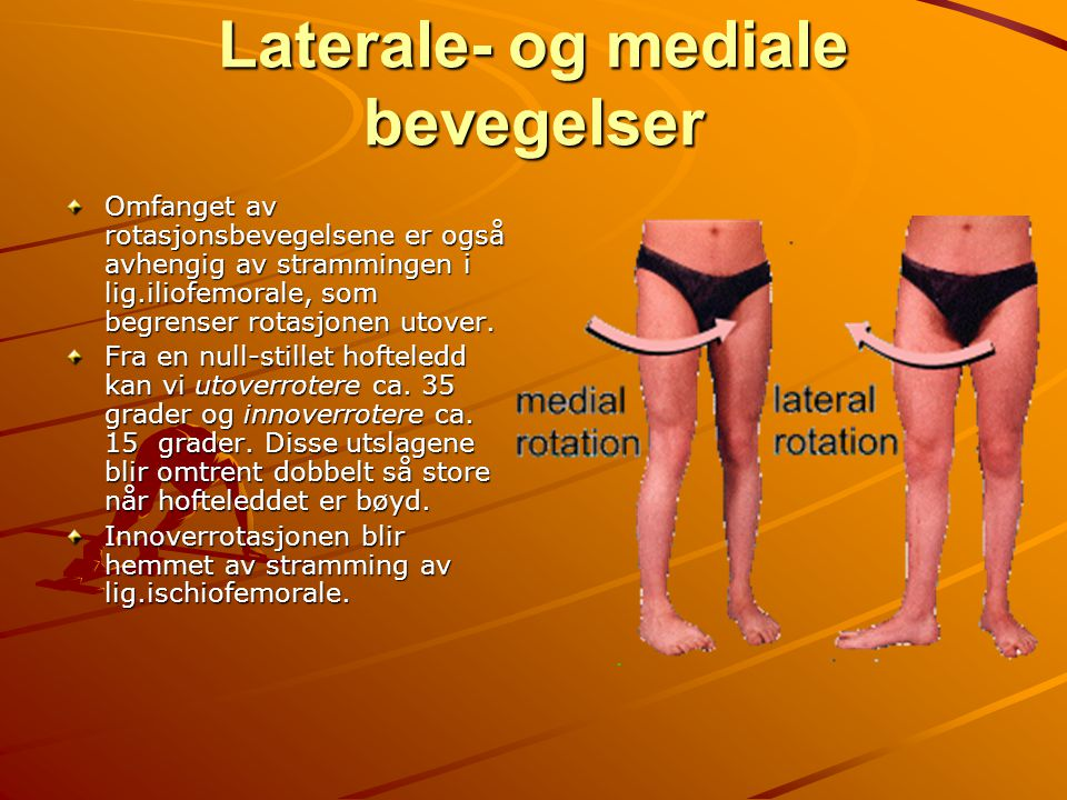 Laterale- og mediale bevegelser