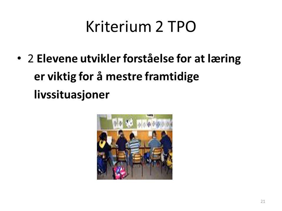 Kriterium 2 TPO 2 Elevene utvikler forståelse for at læring