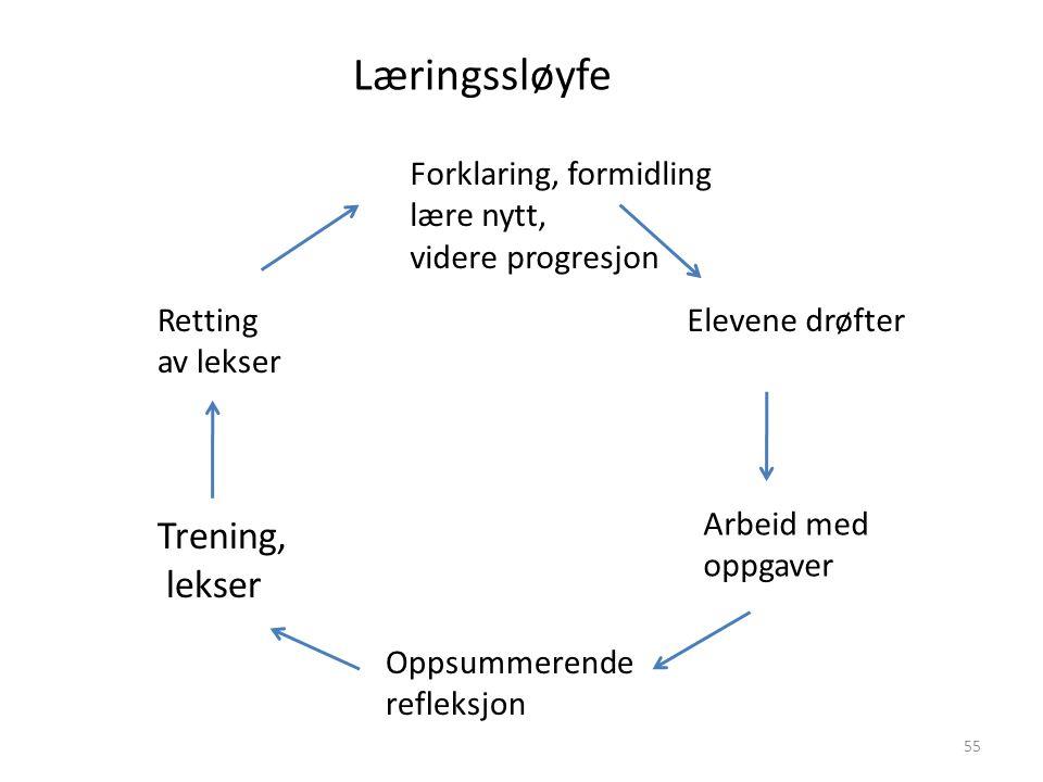 Læringssløyfe Trening, lekser Forklaring, formidling lære nytt,