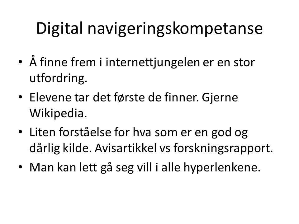 Digital navigeringskompetanse