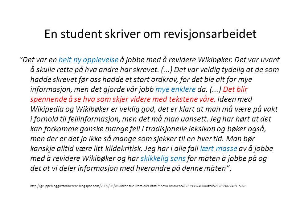 En student skriver om revisjonsarbeidet