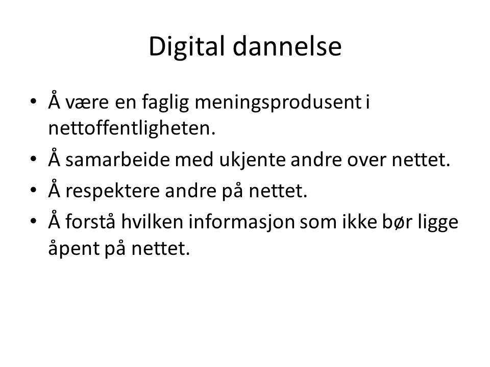 Digital dannelse Å være en faglig meningsprodusent i nettoffentligheten. Å samarbeide med ukjente andre over nettet.