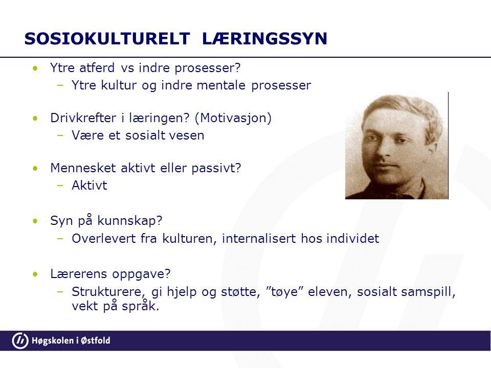 SOSIOKULTURELT LÆRINGSSYN