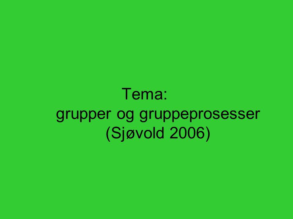 Tema: grupper og gruppeprosesser (Sjøvold 2006)