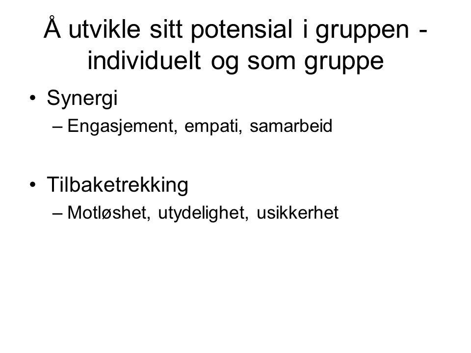 Å utvikle sitt potensial i gruppen - individuelt og som gruppe