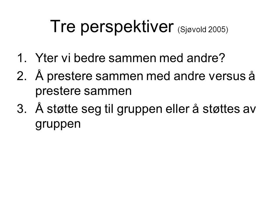 Tre perspektiver (Sjøvold 2005)