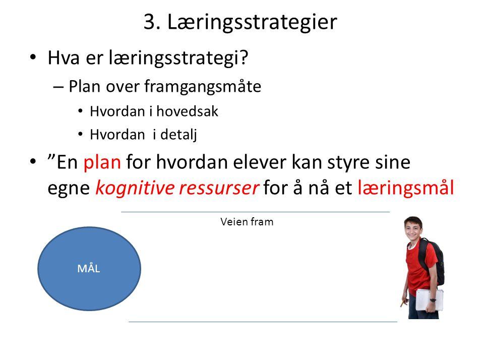 3. Læringsstrategier Hva er læringsstrategi