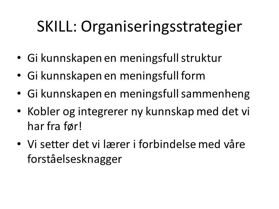 SKILL: Organiseringsstrategier