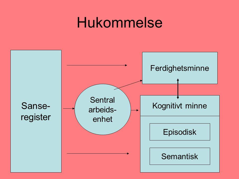 Hukommelse Sanse- register Ferdighetsminne Sentral arbeids-