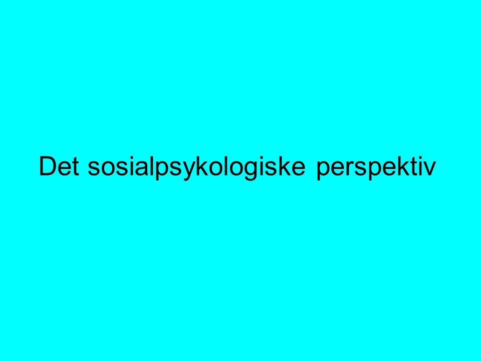 Det sosialpsykologiske perspektiv