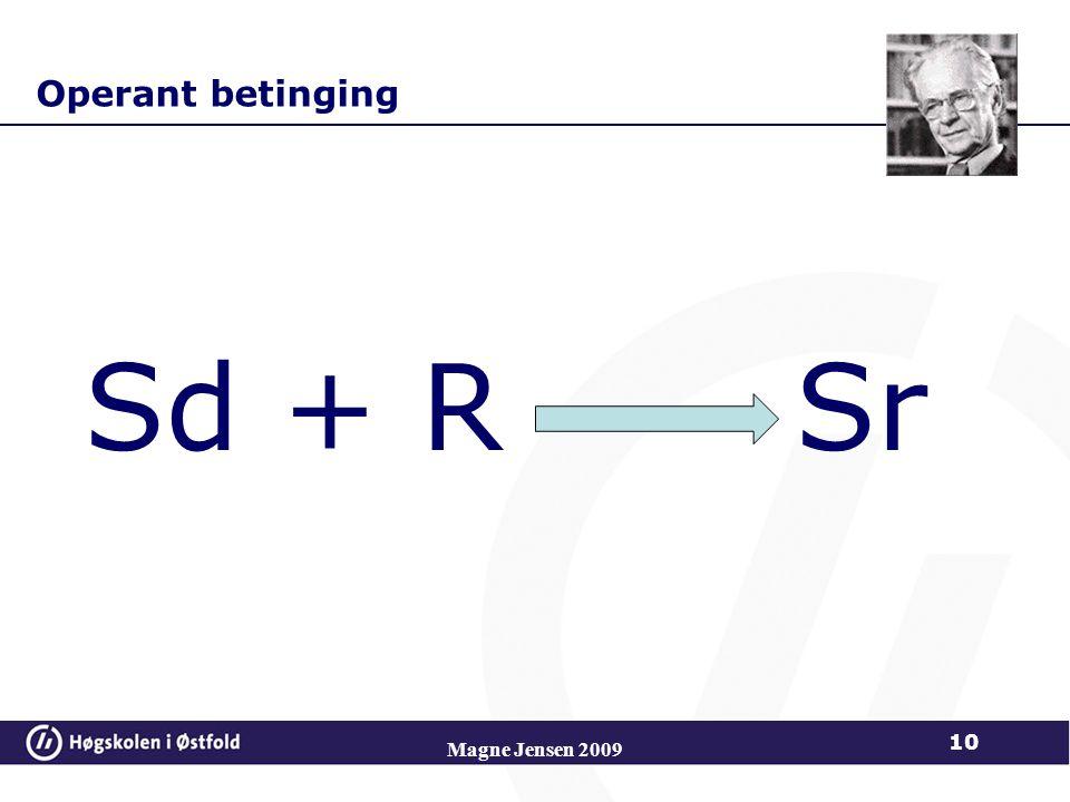 Operant betinging Sd + R Sr Magne Jensen 2009