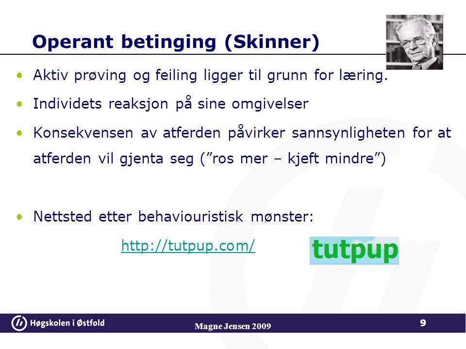Operant betinging (Skinner)
