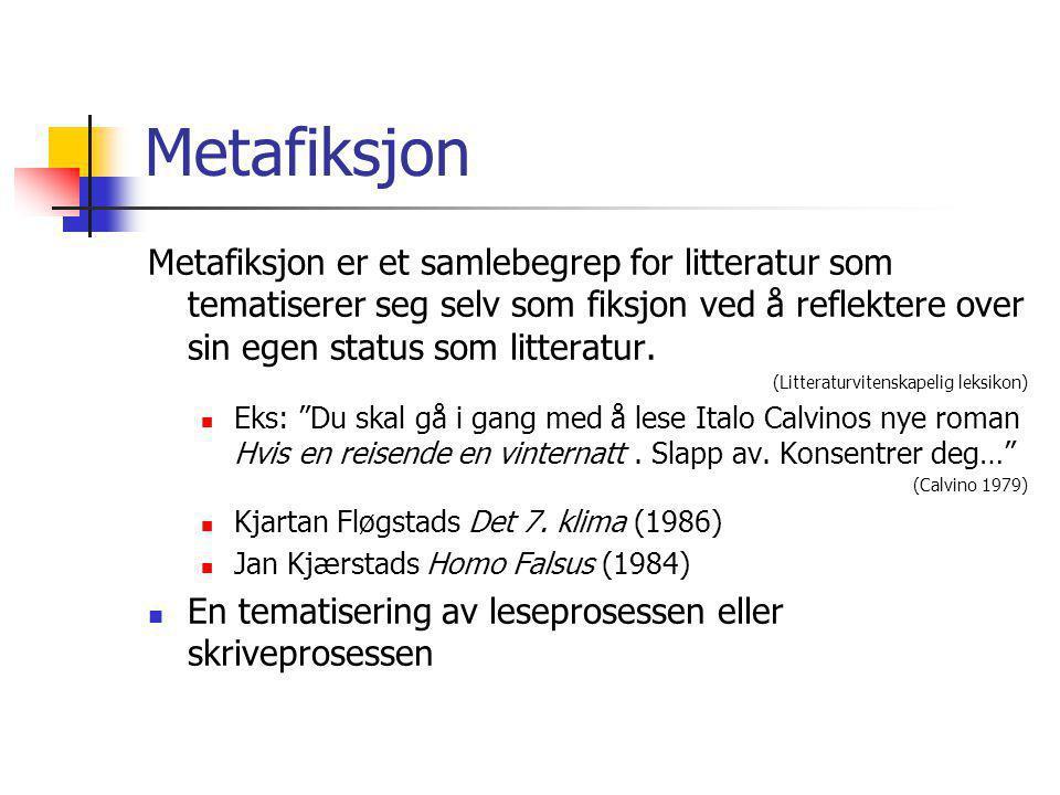 Metafiksjon Metafiksjon er et samlebegrep for litteratur som tematiserer seg selv som fiksjon ved å reflektere over sin egen status som litteratur.