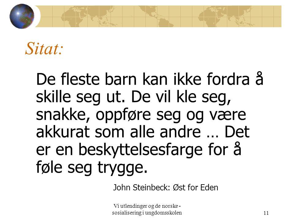 Vi utlendinger og de norske - sosialisering i ungdomsskolen