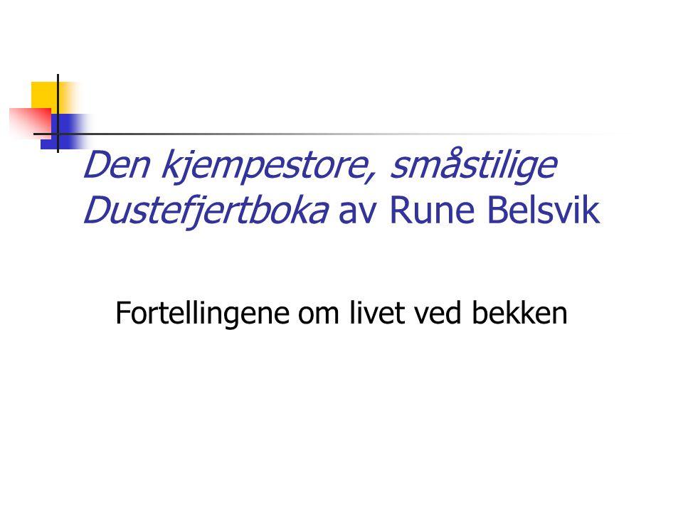 Den kjempestore, småstilige Dustefjertboka av Rune Belsvik