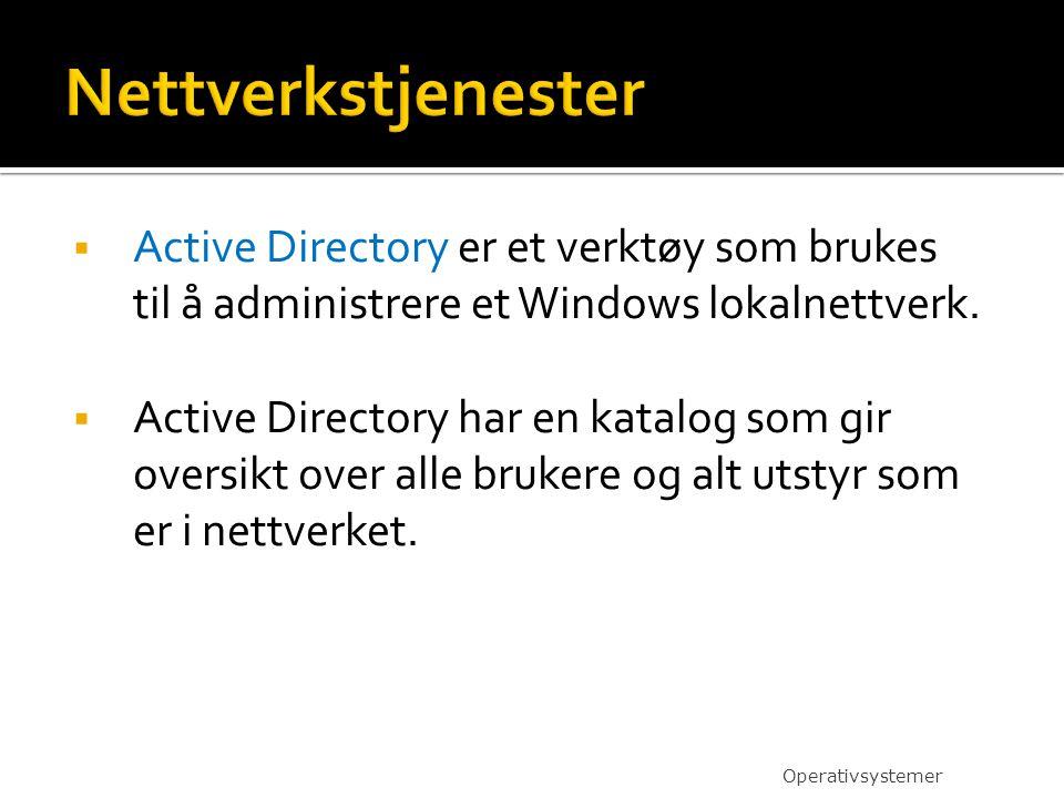 Nettverkstjenester Active Directory er et verktøy som brukes til å administrere et Windows lokalnettverk.