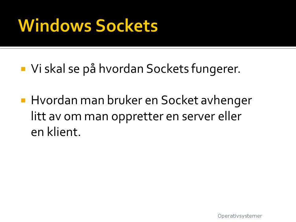 Windows Sockets Vi skal se på hvordan Sockets fungerer.