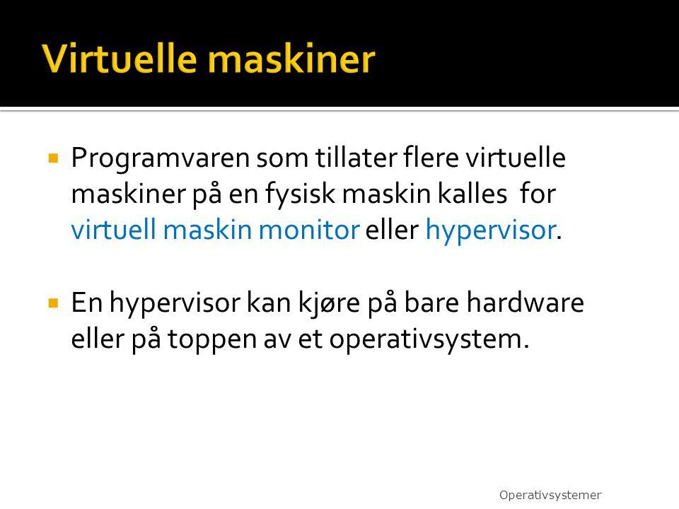 Virtuelle maskiner Programvaren som tillater flere virtuelle maskiner på en fysisk maskin kalles for virtuell maskin monitor eller hypervisor.