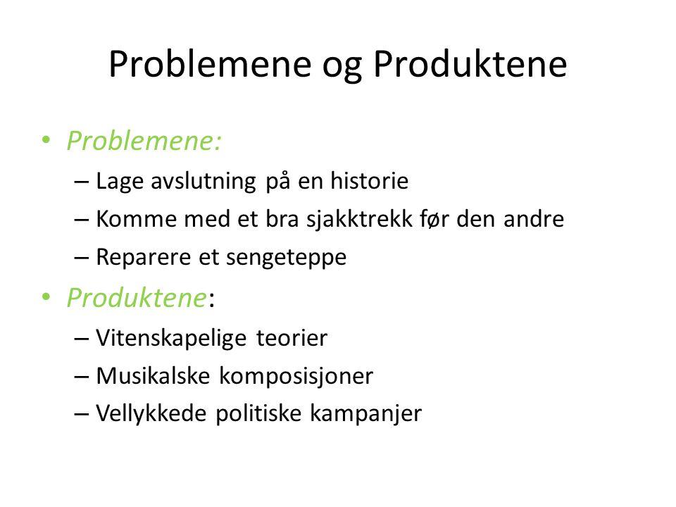 Problemene og Produktene