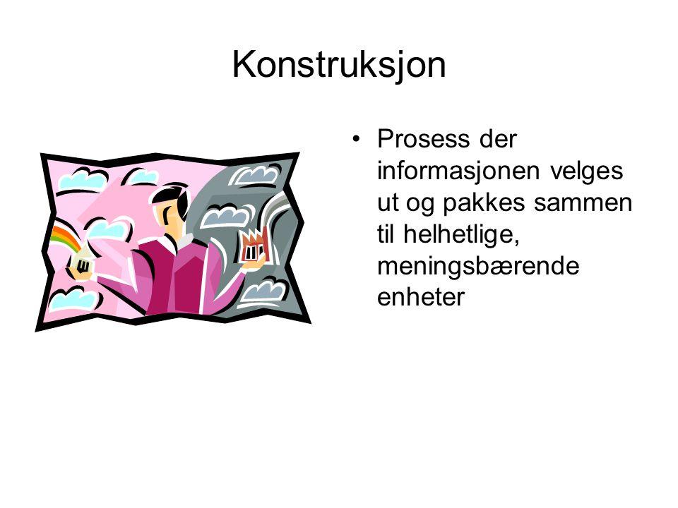 Konstruksjon Prosess der informasjonen velges ut og pakkes sammen til helhetlige, meningsbærende enheter.