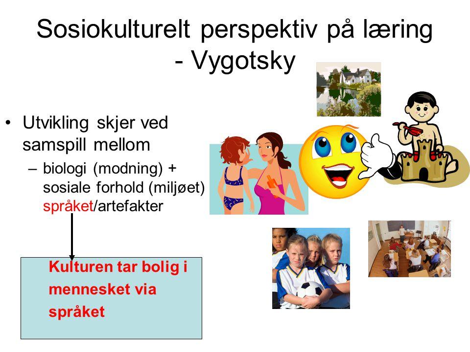 Sosiokulturelt perspektiv på læring - Vygotsky