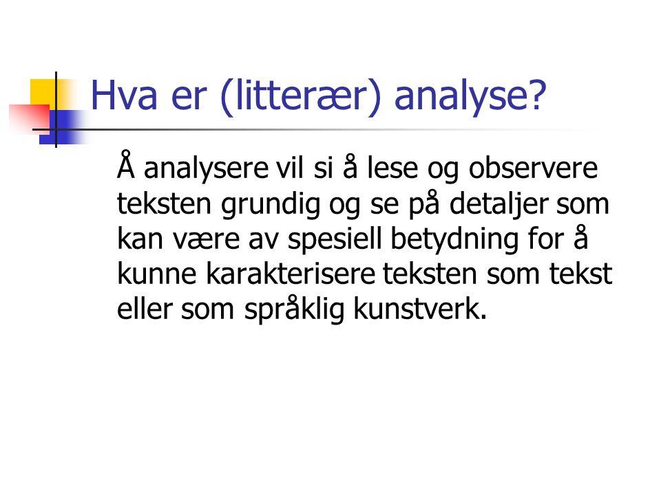Hva er (litterær) analyse