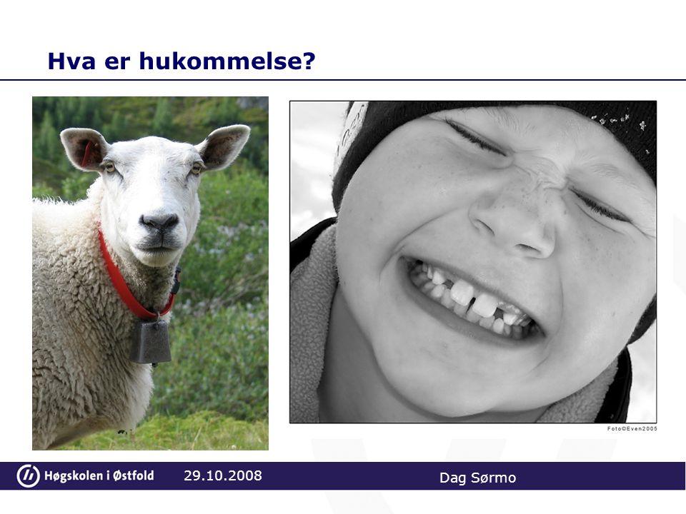 Hva er hukommelse 29.10.2008 Dag Sørmo Dum som en sau