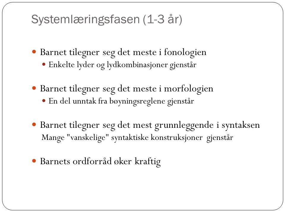 Systemlæringsfasen (1-3 år)