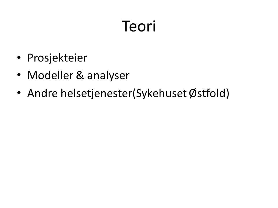 Teori Prosjekteier Modeller & analyser
