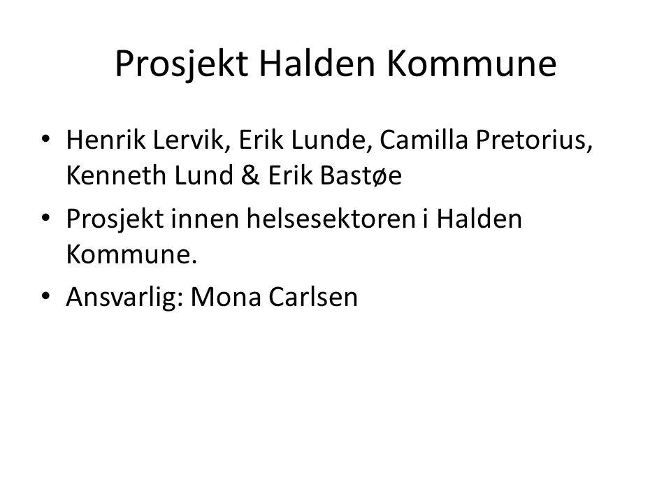 Prosjekt Halden Kommune