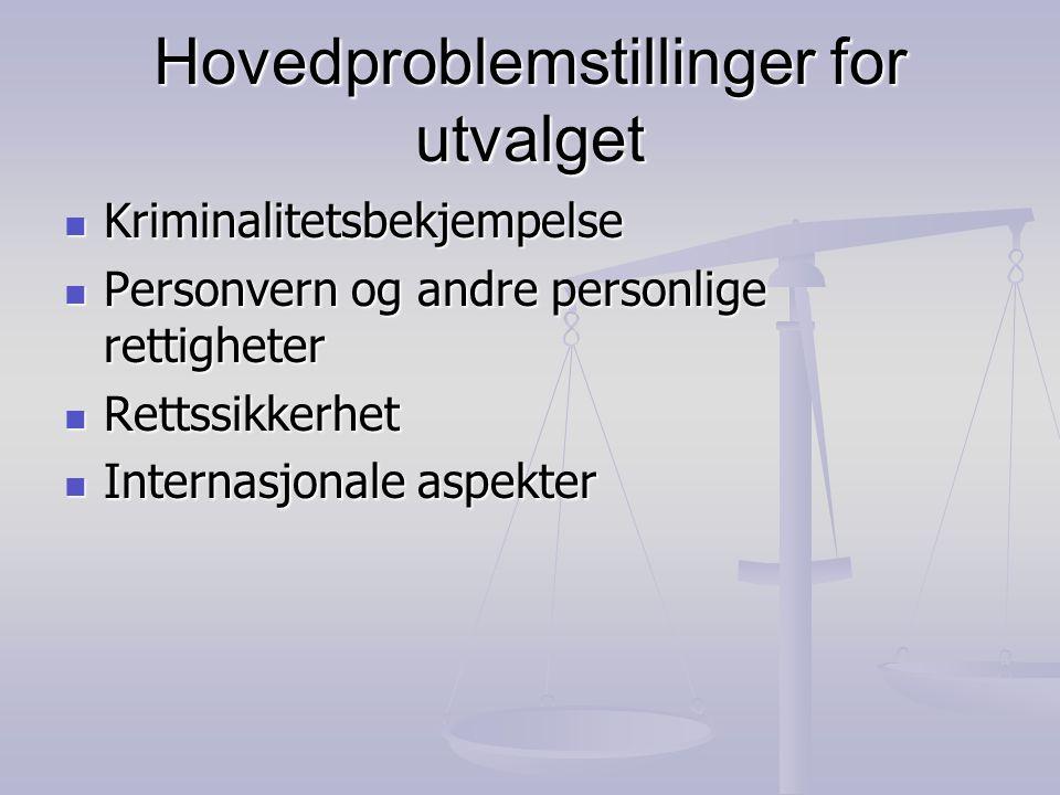 Hovedproblemstillinger for utvalget