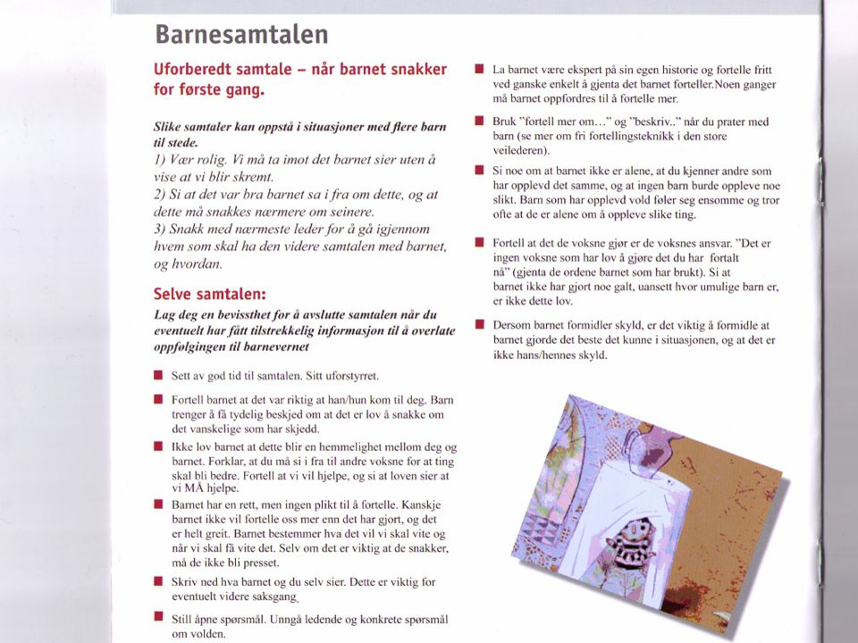 4. og 5. desember 2008 Nordisk konferanse om tvangsekteskap og botilbud
