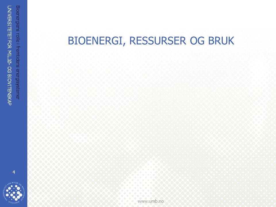BIOENERGI, RESSURSER OG BRUK