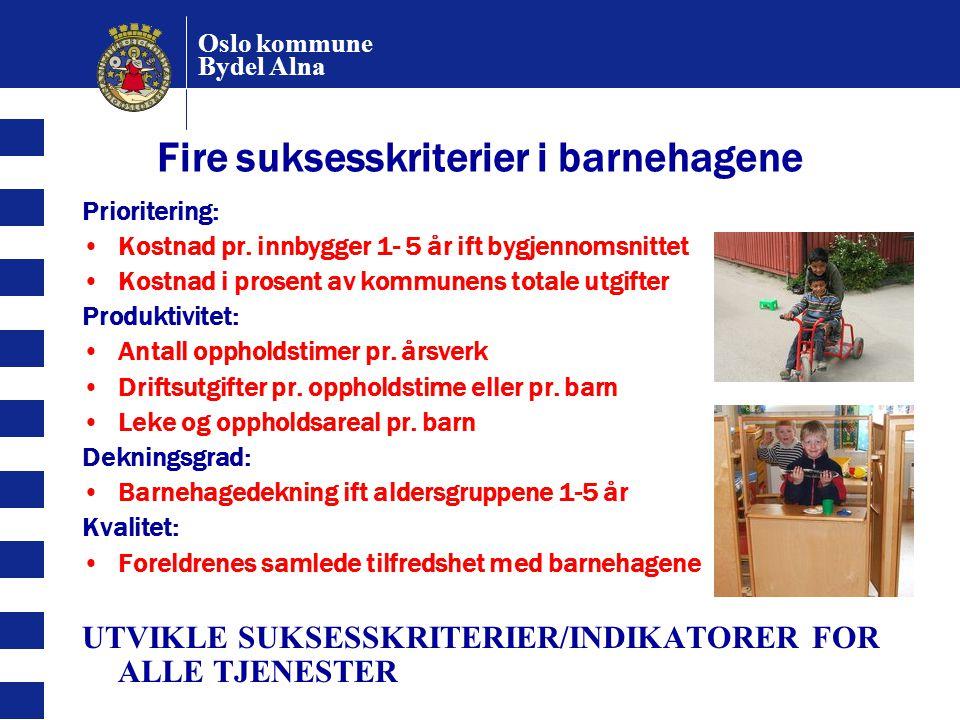 Fire suksesskriterier i barnehagene