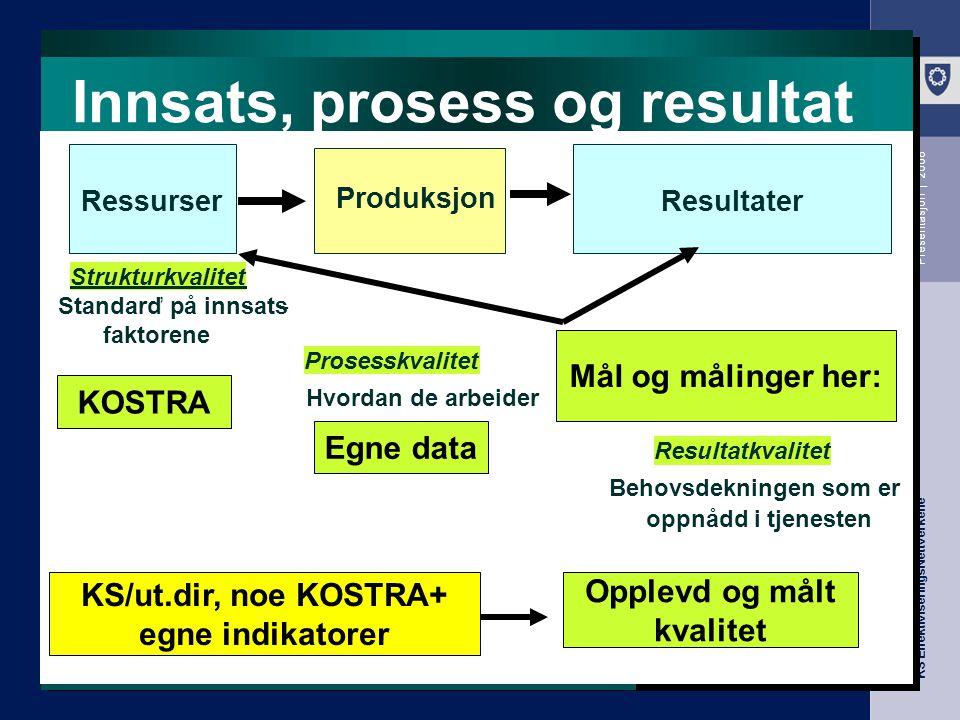 Innsats, prosess og resultat