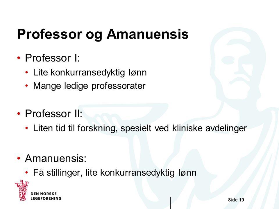 Professor og Amanuensis
