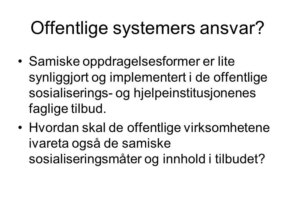 Offentlige systemers ansvar
