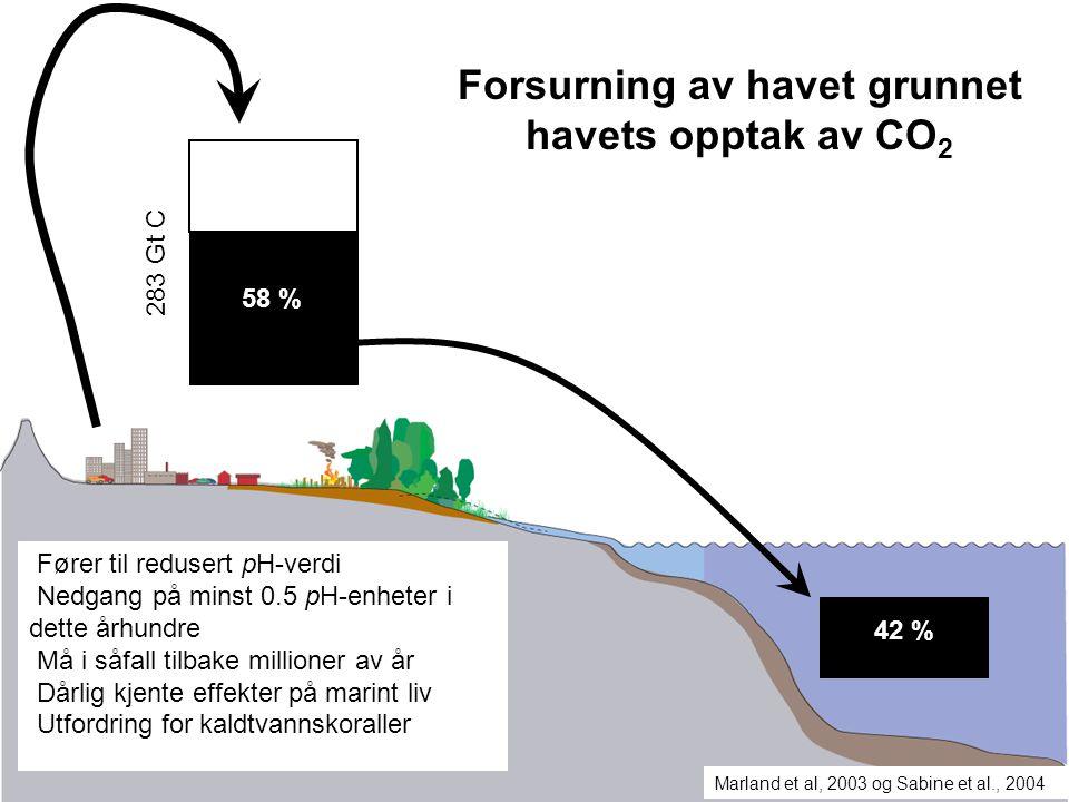Forsurning av havet grunnet havets opptak av CO2
