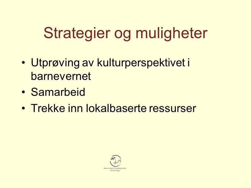 Strategier og muligheter