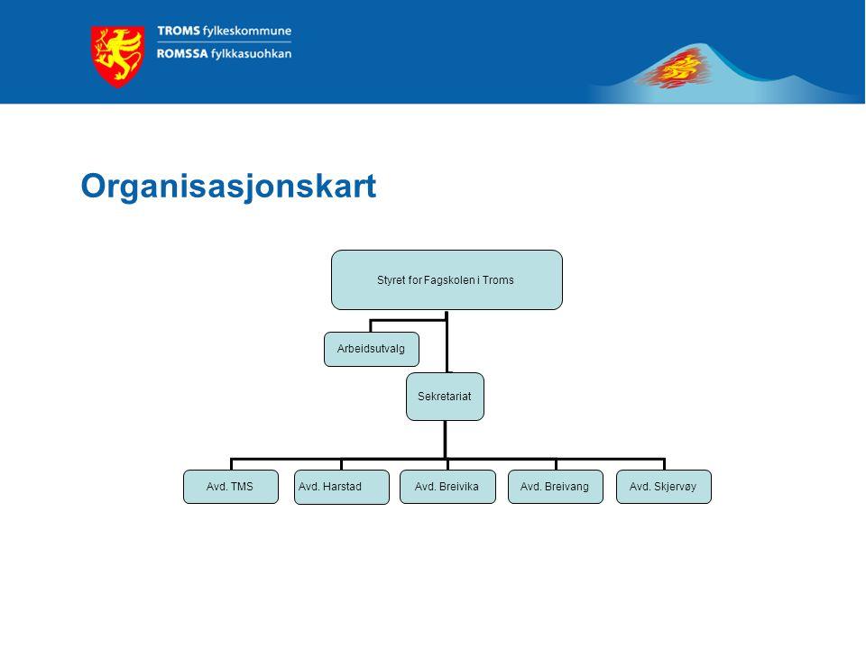 Styret for Fagskolen i Troms